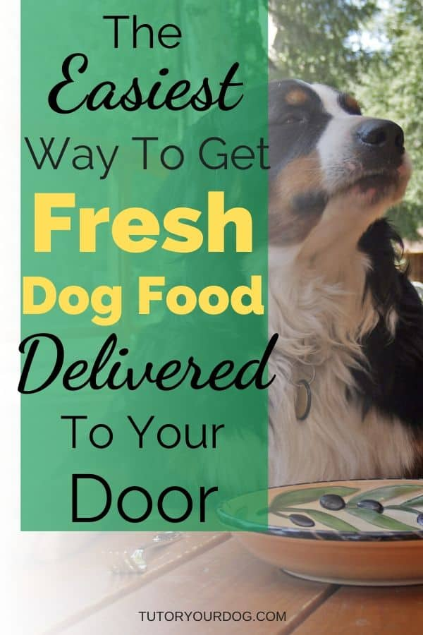 The Easiest Way To Get Fresh Dog Food Delivered To Your